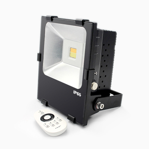 50W+50W CCT Flood light