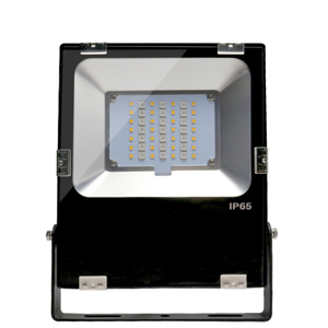 30W RGBW Floodlight