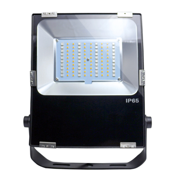 50W RGBW Floodlight